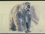 Angry Bear (1975) Brazilian soapstone